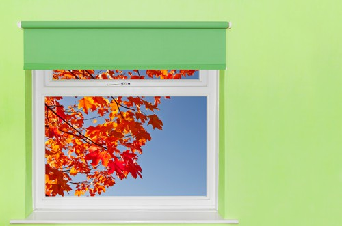 Where Can I Buy Rollerblinds Roller Blinds Singapore