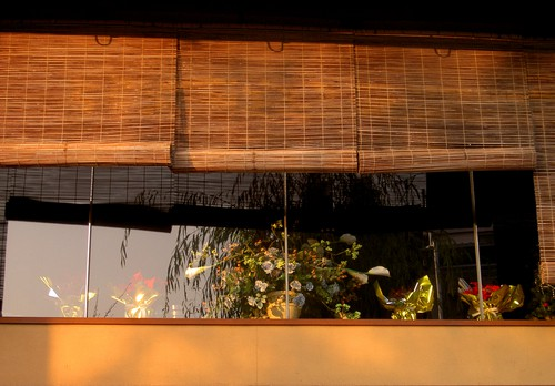 7 Reasons to Install Bamboo Blind